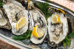 Opened oysters with piece of lemon. Royalty Free Stock Photos