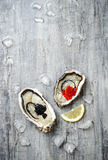 Opened oysters with red salmon and black sturgeon caviar and lemon on ice on grey concrete background. Top view, flat lay, copy space royalty free stock image