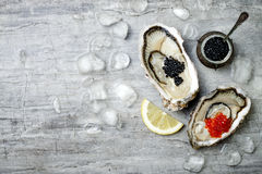 Opened oysters with red salmon and black sturgeon caviar and lemon on ice on grey concrete background. Top view, flat lay Stock Image
