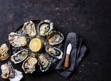 Opened Oysters Speciale de Claire Royalty Free Stock Images