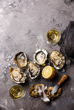 Opened Oysters and white wine Stock Photo