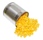 Maïs en boîte Photos libres de droits