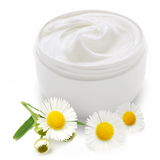 Opened plastic container with cream and camomile. Royalty Free Stock Images