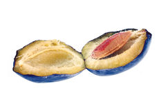 Opened plum with stone inside Stock Images