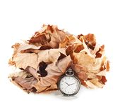 Opened pocket watch and dried leaves Stock Image