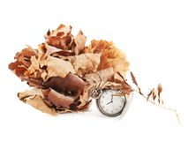 Opened pocket watch and dried leaves Royalty Free Stock Photos