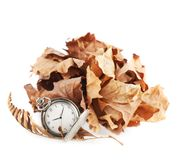 Opened pocket watch and dried leaves Royalty Free Stock Images