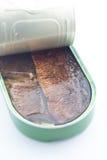 Opened può del pesce Immagine Stock Libera da Diritti