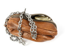 The opened purse Royalty Free Stock Images