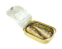 Opened tin of sardines in oil and water Stock Photography