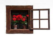 Opened Traditional Wooden Window with Red Flowers. On White Washed Wall Royalty Free Stock Image