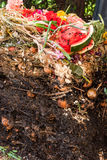 Opened up compost pile Royalty Free Stock Photo