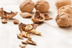Opened and whole Walnuts Royalty Free Stock Images