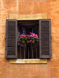 Opened window with flower pots on facade in Rome, Italy Stock Image