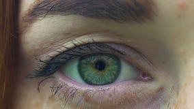 Openend groen oog van vrouw met sproeten, opent het wijfje ogen kijkt in camera langzaam stock videobeelden
