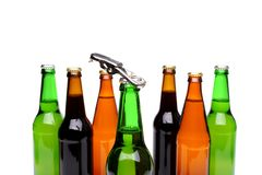 Opener on bottleneck. Bottles of beer. Close up. Stock Images