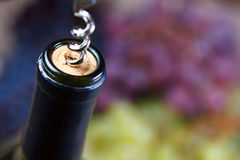 Opening of bottle of wine with corkscrew Royalty Free Stock Photos