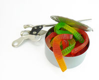 Opening a can of worms. An opened can of red, green and yellow worms with a can opener, on a white background Royalty Free Stock Photo