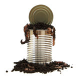 Opening a Can of Worms Royalty Free Stock Images