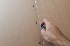 Opening a cardboard box Royalty Free Stock Images