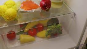 Opening fridge for food stock video