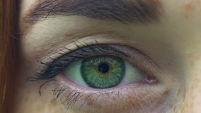 Opening green eye of woman with freckles, female opens eyes looks in camera slow stock video footage