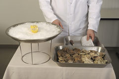 Opening the hollow and flat oysters Stock Image