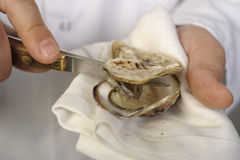 Opening the hollow and flat oysters Royalty Free Stock Photography