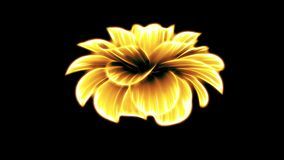 Opening long blooming yellow neon flower time-lapse 3d animation isolated on background new quality beautiful holiday. Opening long blooming flower time-lapse 3d stock video