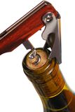 Opening a wine bottle. With corkscrew, isolated on white Stock Photography