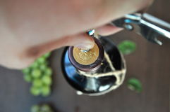 Opening a wine bottle Stock Image