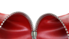 Opening zipper with red leather Royalty Free Stock Images