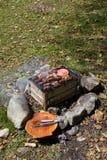 Openlucht barbecue Royalty-vrije Stock Afbeeldingen