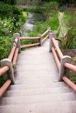 Openlucht concrete trapweg Royalty-vrije Stock Afbeelding