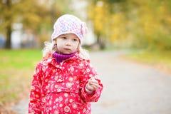 Openlucht de herfstportret van een klein meisje stock afbeelding