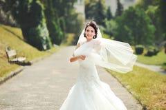 Openlucht de zomerportret van jonge donkerbruine bruid Royalty-vrije Stock Foto's