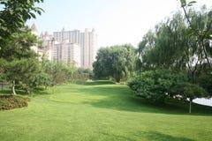 In openlucht groen landschap Stock Foto's