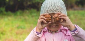 In openlucht het spelen van leuk meisje die noten voor haar houden Notenoogsten De herfst in de tuin, het meisje en de grote note stock fotografie