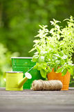 Openlucht het tuinieren hulpmiddelen Royalty-vrije Stock Foto