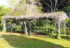 In openlucht klasse voor activiteiten en stoelen onder de bomen Royalty-vrije Stock Fotografie