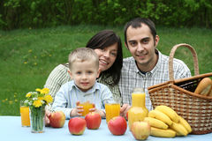 Openlucht picknick Royalty-vrije Stock Foto