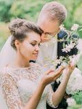 Openlucht romantisch portret van de koesterende jonggehuwden die van de tijd in de tuin genieten stock foto