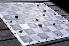 Openlucht schaak Royalty-vrije Stock Afbeelding