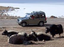 In openlucht voertuig het drijven in het Indische Himalayagebergte over berg Royalty-vrije Stock Afbeeldingen