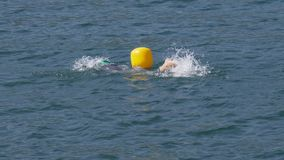 Openlucht zwemmen stock videobeelden
