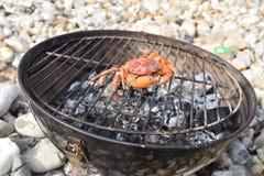 Openluchtbarbecue die een krab op het strand koken Royalty-vrije Stock Fotografie