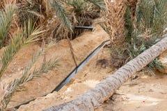 Openluchtmening van een irrigatiekanaal royalty-vrije stock foto's