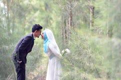 Openluchtportret van een mooi malay huwelijkspaar in een mooi park stock afbeelding