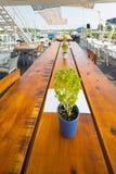 Openluchtrivierrestaurant op boot Mooi terras Stock Fotografie