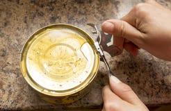 Opens装与开罐头用具的鱼于罐中 图库摄影
